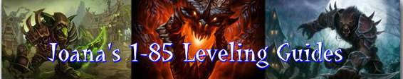JOANAS 1-85 HORDE LEVELING WORLD OF WARCRAFT GUIDE