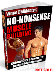 Vince Del Monte's No Nonsense Muscle Building & Army