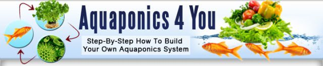 Step-By-Step How To Build Your Own Aquaponics System